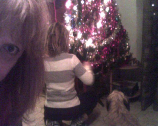 albero in preparazione con la visione di wlli ..ahhah