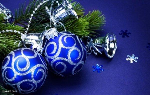 christmas003005vipics
