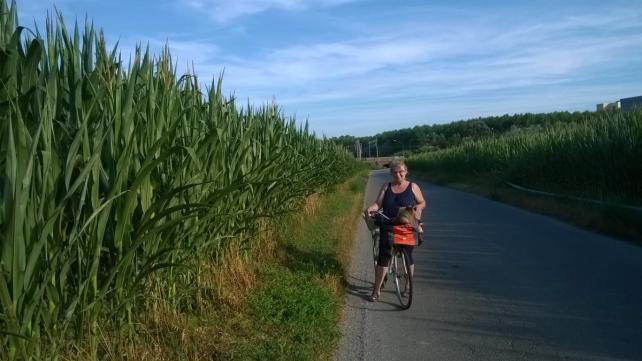 imgpsh_fullsize.jpg pedalando in bicicletta
