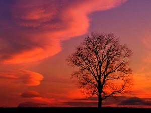 tramonto-rosso-kentucky-300x225